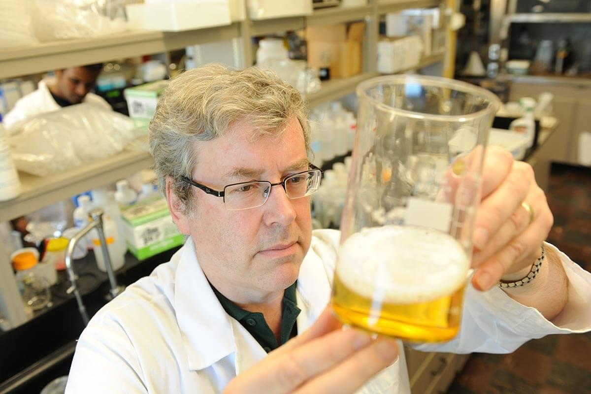 research-scientist